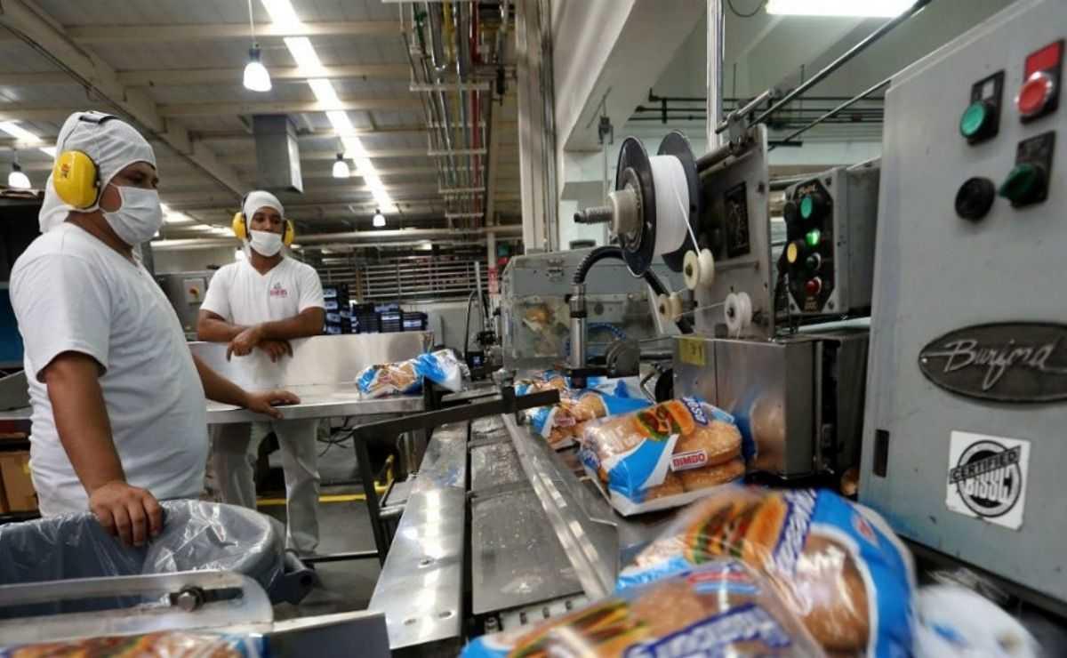 La nueva línea de producción en Toluca servirá para incrementar el abastecimiento y distribución de bollería