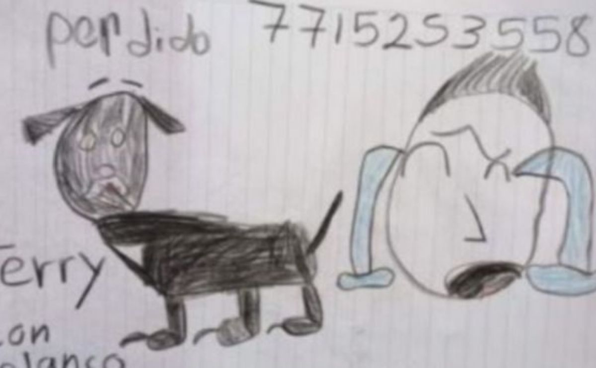Niño se hace viral por buscar a su perro con un dibujo
