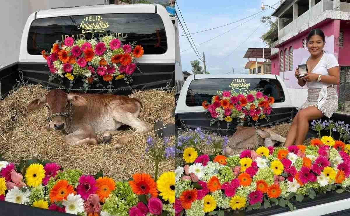 En las imágenes se observa la parte trasera de una camioneta adornada con flores y al becerro recostado en una pila de paja.