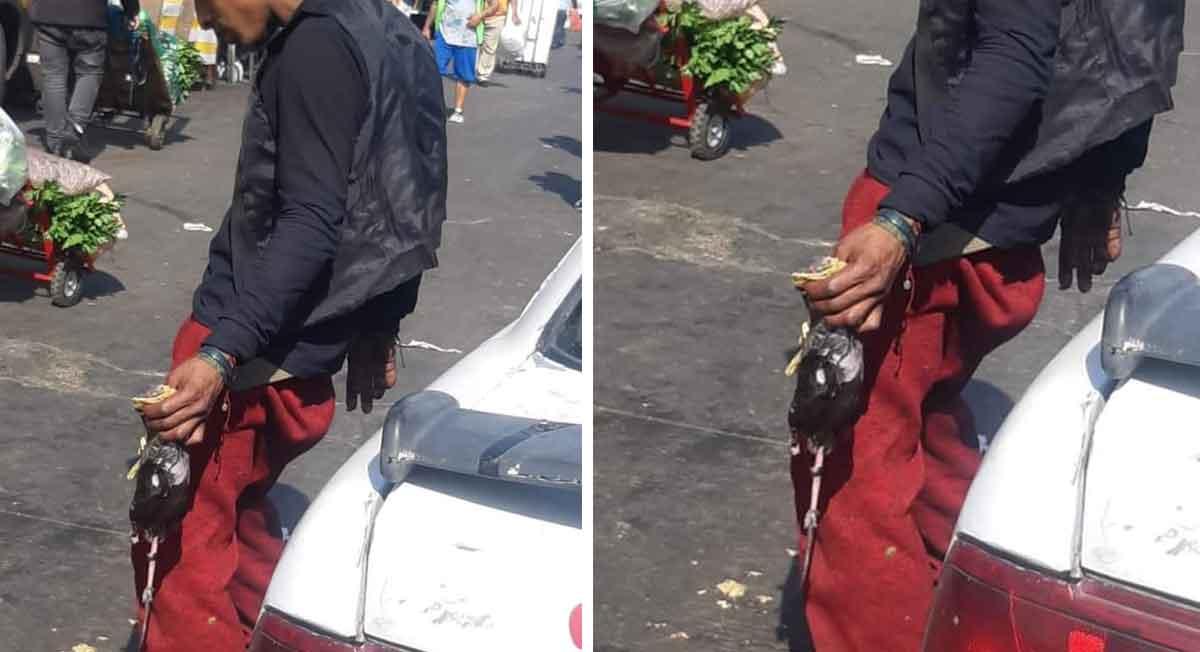 foto compartida en redes sociales donde se ve a un joven comiendo un taco de rata