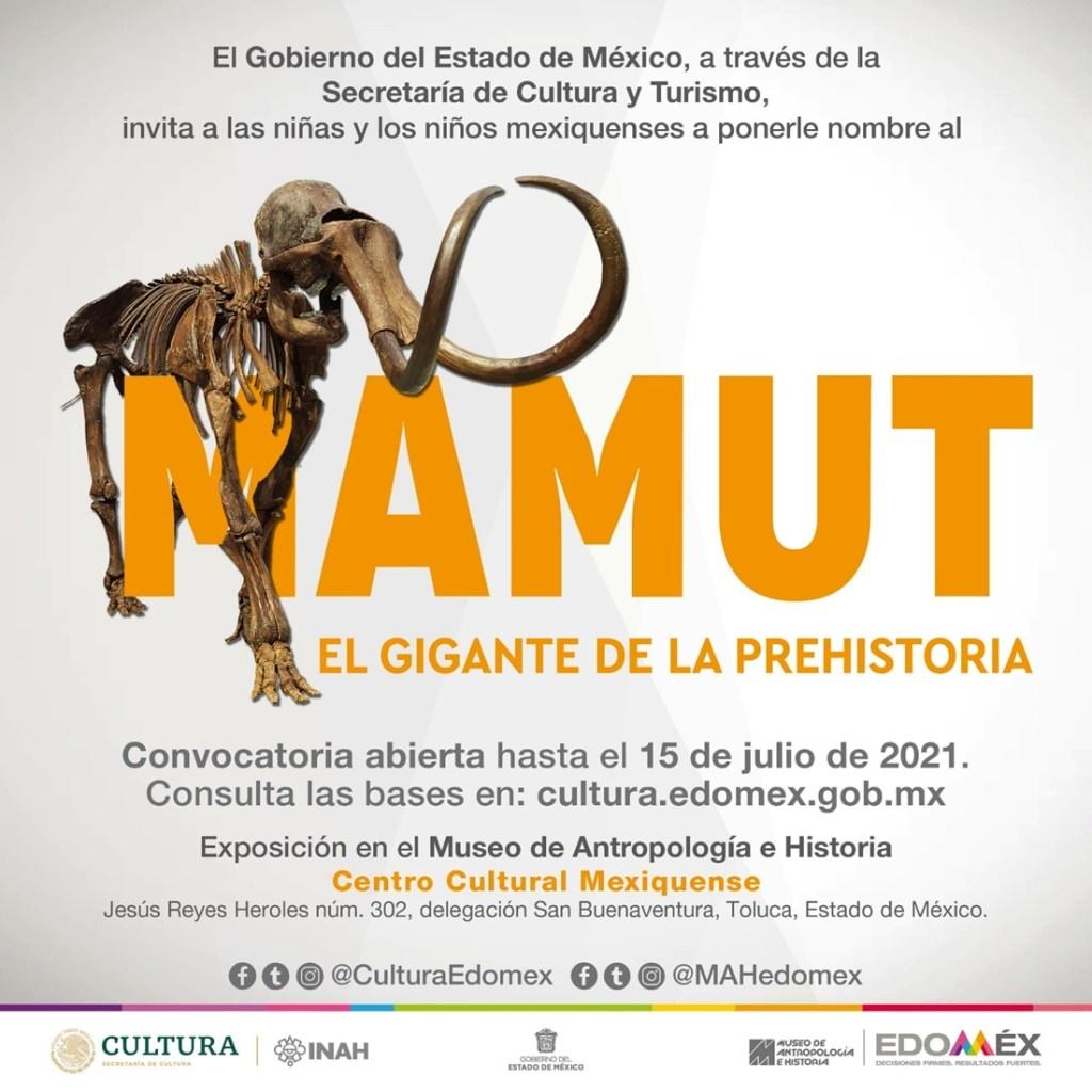 dvisrtete este verano y conoce la convocatoria y preios para nombrar al mamut encontrado en ecatepec