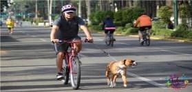 día mundial de la bicicleta 2021 es el 03 de junio