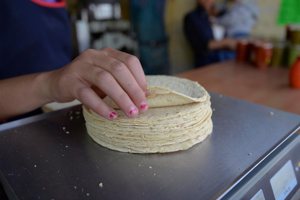 De acuerdo a información de Quien es quien en los precios, el promedio en el que se debe de vender el kilo de tortilla es en 17.20 pesos