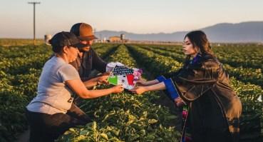 universitaria realiza sesion fotográfica de graduación en campo de cultivos y se vuelven virales