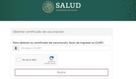 Certificado de vacunación, como descargarlo desde WhatsApp