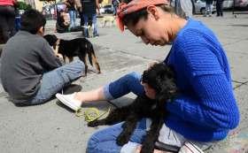 ¡Adopta y no compres! Feria de adopción en Lerma.