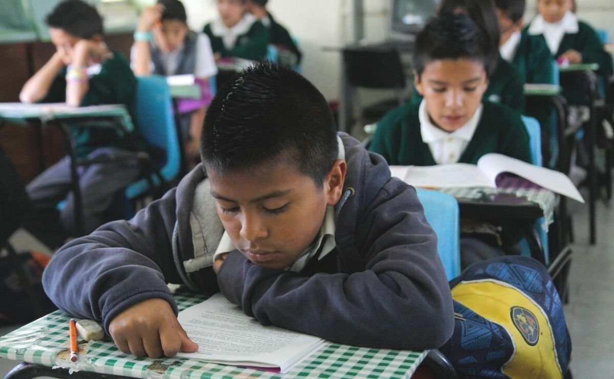 Becas Edomex - ¿Cómo solicitar apoyo de 800 pesos para preescolar, primaria y secundaria?