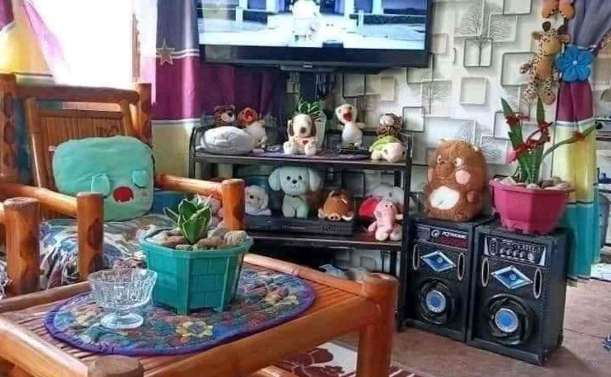 En las imágenes se observa por fuera una vivienda hecha con bloques de concreto, que está adornada con plantas y piedras; muy parecidas a las casas de algunas familias que se encuentran en zonas rurales en distintas partes de México