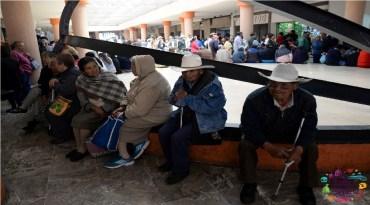 adultos mayores tramitando su pensión en Toluca Edomex