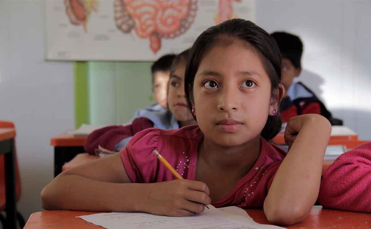 ¿Cómo obtener la beca bienestar para las familias de educación básica?