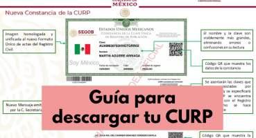 Guía para consultar tu CURP de manera gratuita por internet