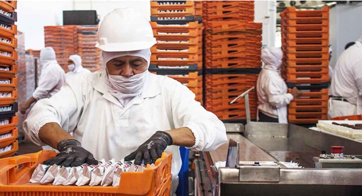 Bimbo y Nestlé abren ofertas de empleo en Edomex, CDMX y en el extranjero