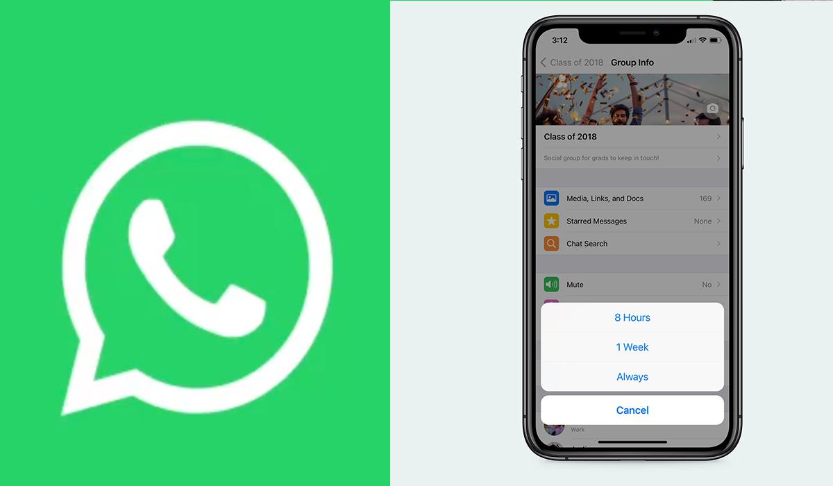 WhatsApp 2021: ¿Cómo puedo eliminar los grupos?, así podrás hacerlo