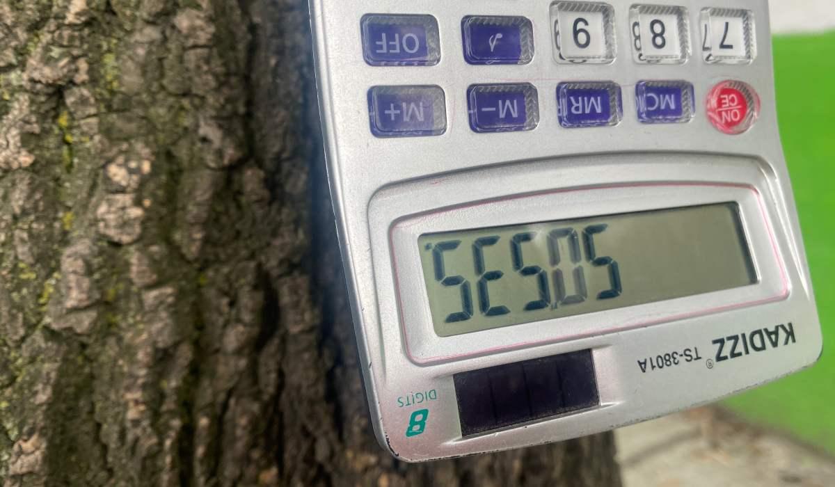 juegos de calculadora era una actividad para poderse divertir antes