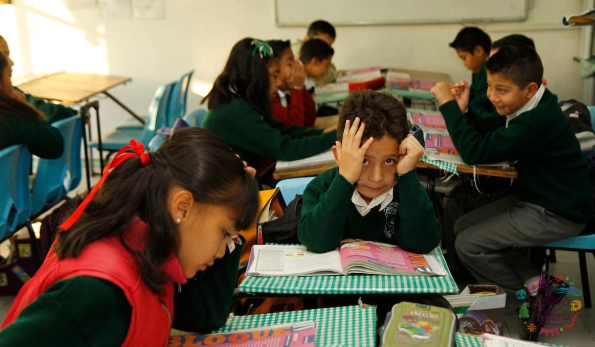 Paso a paso para registrarse a Mi Beca Bienestar para alumnos de preescolar, primaria y secundaria