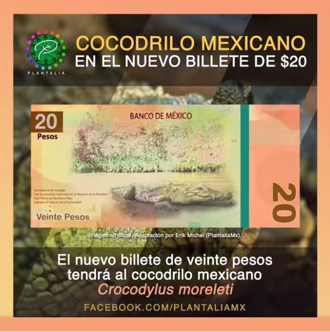 diseño de nuevos billetes de 20 pesos de mexico