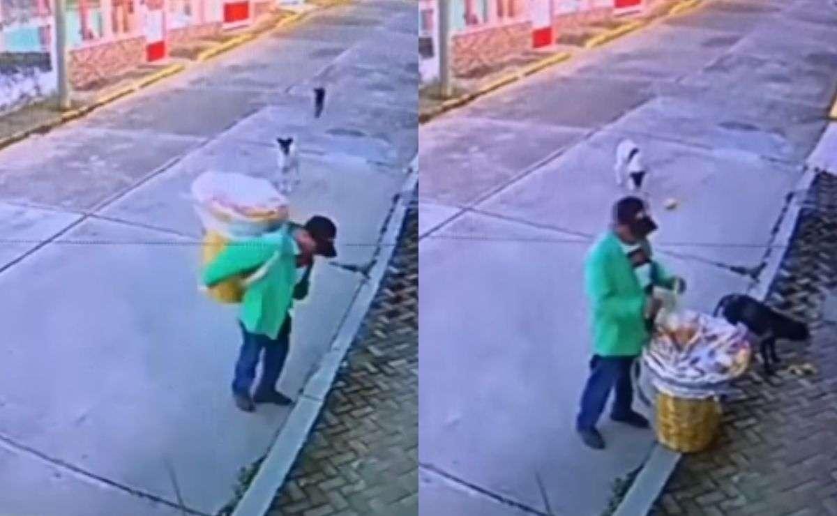 Vendedor ambulante regala comida a perros de la calle y se hace viral