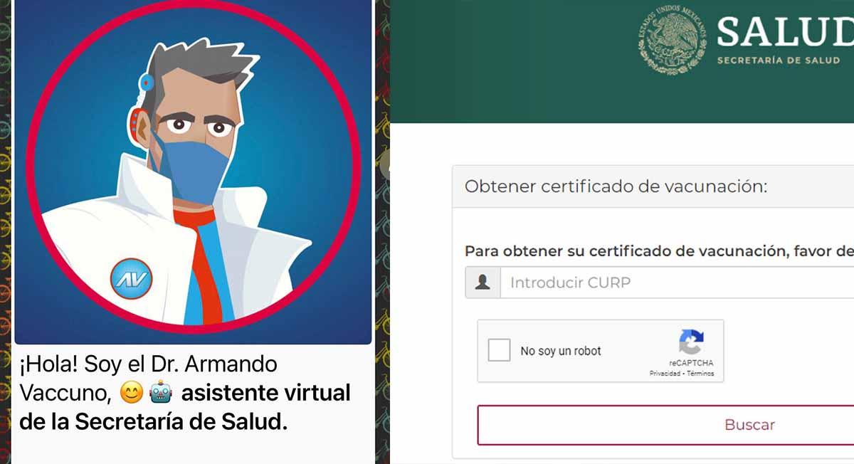 Certificado de vacunación: así puedes tramitarlo desde tu celular
