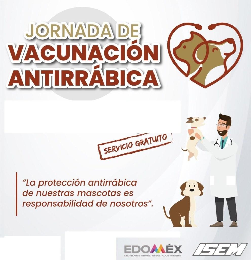 cuando vacunarán contra la rabia en Toluca