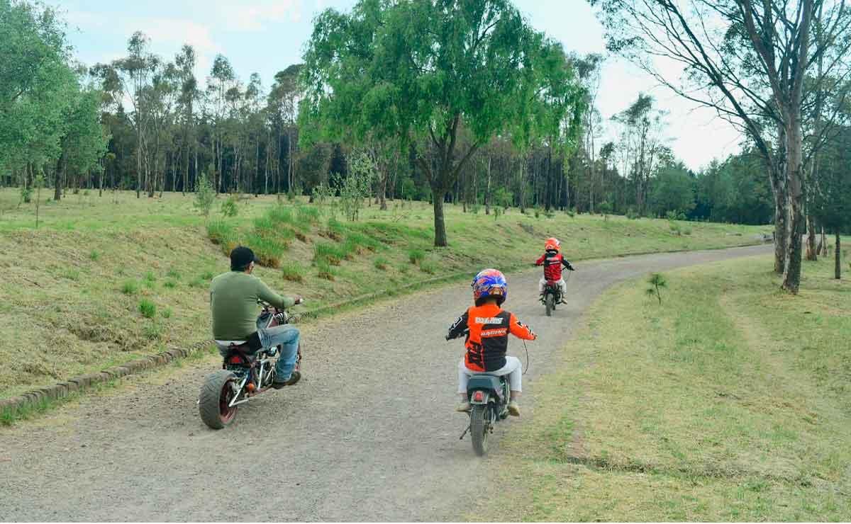 ¡Cuidado! Aparecen víboras en el Parque Alameda 2000 en Toluca
