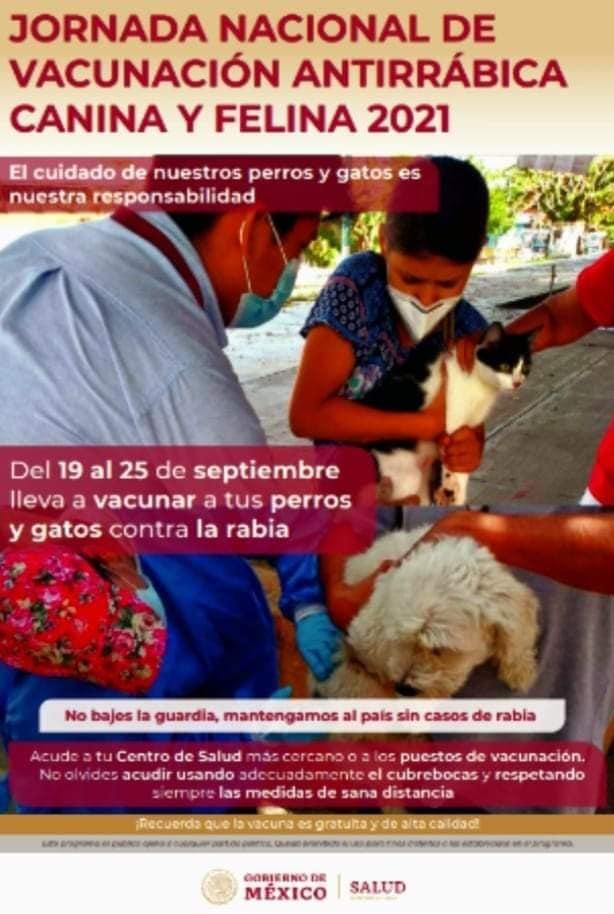 fecha de la vacunacion antirrabica en Toluca 2021