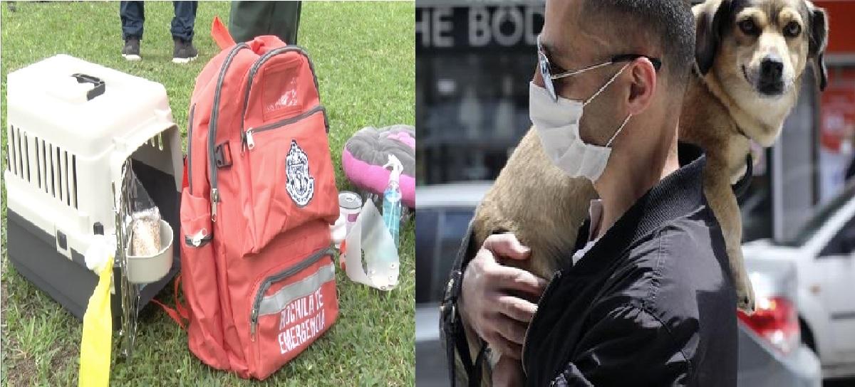 ¿Cuál es el contenido de la mochila de emergencia para mascotas?