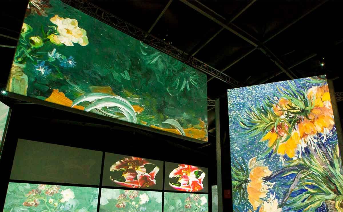 Van Gogh llega a Toluca: ¿Cuánto costarán los boletos?