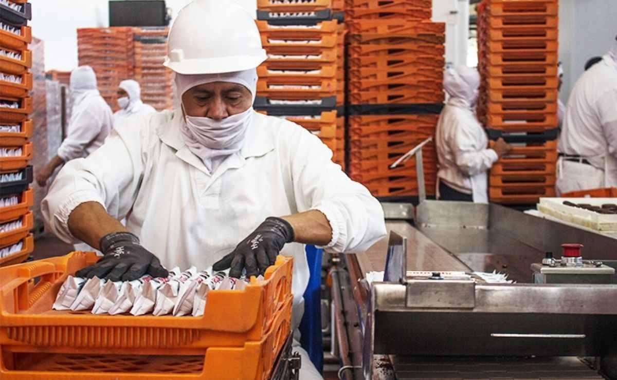 Grupo Bimbo ofrece vacantes de empleo en Edomex y CDMX