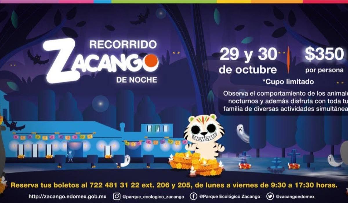 Disfruta del recorrido nocturno en el Zoológico de Zacango este 29 y 30 de octubre